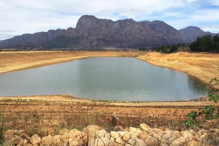 Damm, Wassermangel, Wasserknappheit, Boschendal