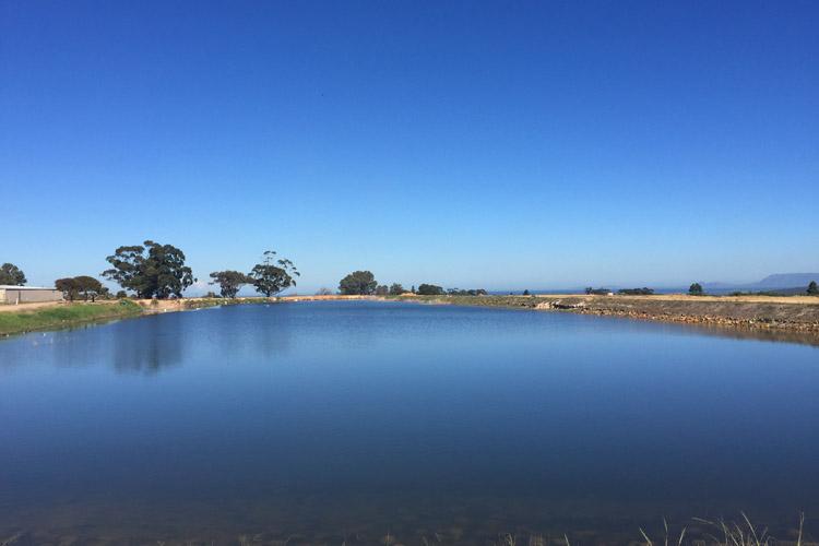 Damm, Wasserrestriktionen, Kapstadt