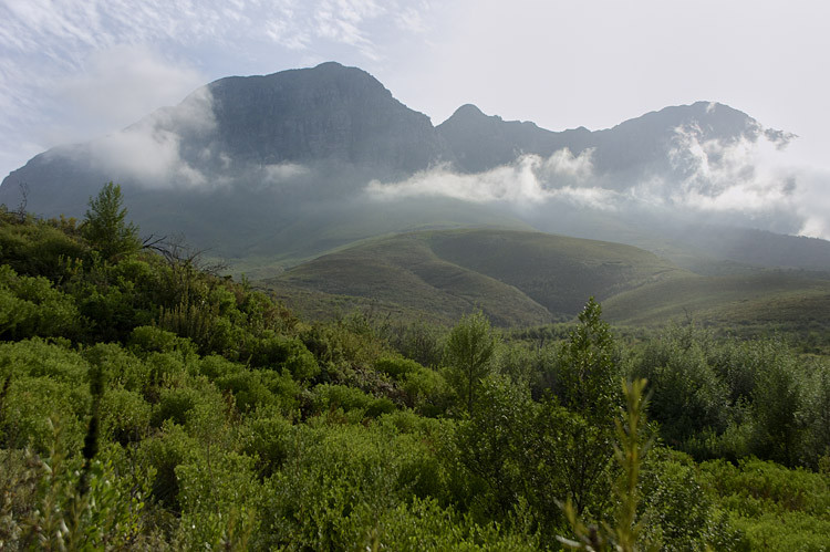 Helderberg, Somerset West, Nature Reserve
