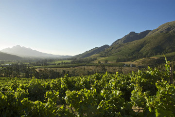 Franschhoek, Weinberge, Tagestour, Tour